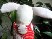 Backtack_bunny_back